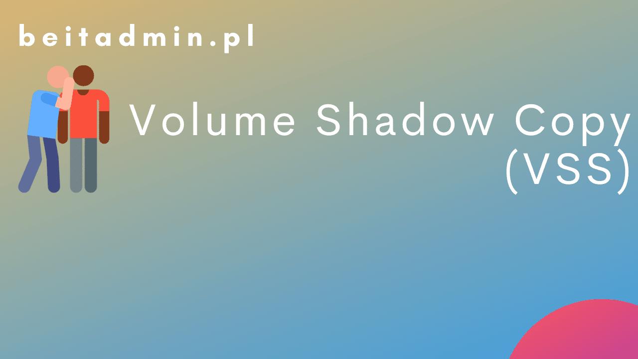 Volume Shadow Copy (VSS)